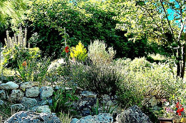 Jardin de Zahia