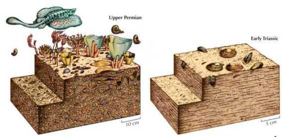 Extinction de la fin du Permien