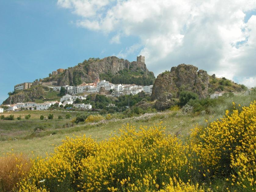 Biome méditerranéen (Andalousie) Guarrigue et maquis