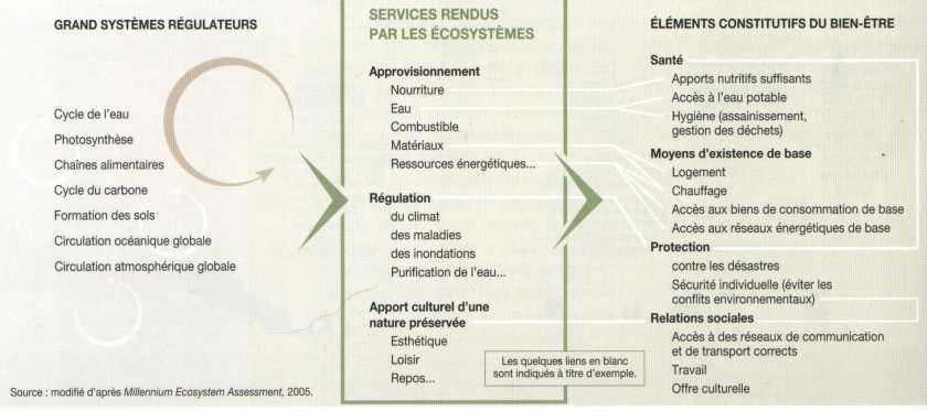 Biomes et éconosphère