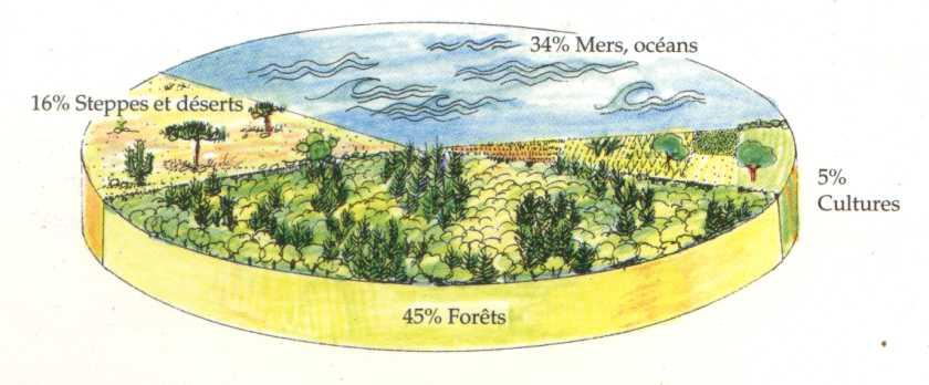 Pourcentages de la production des biomes