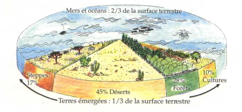 Pourcentages de la répartitiion des biomes