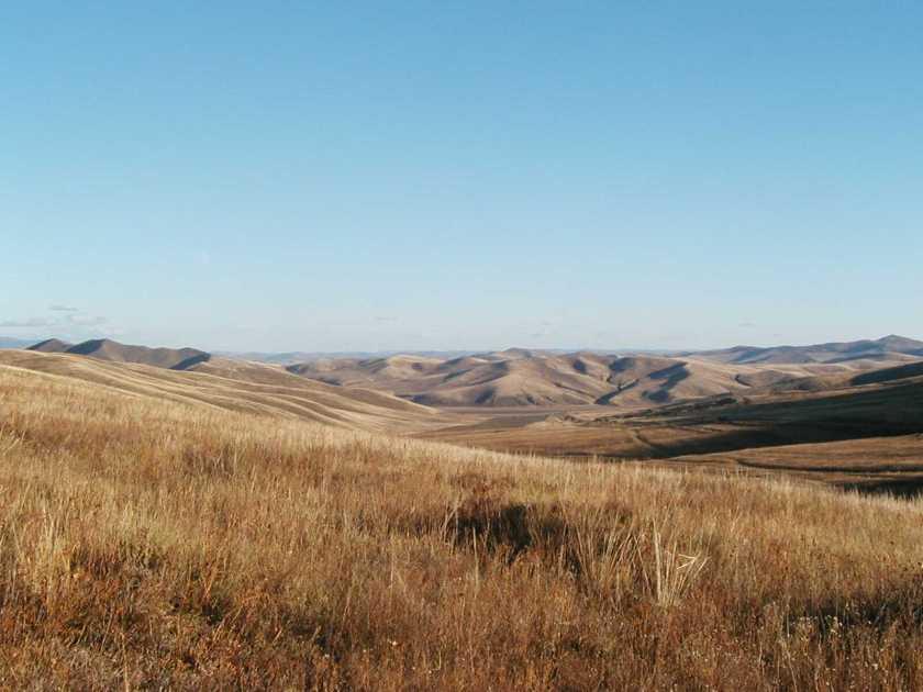 Steppes et grandes prairies