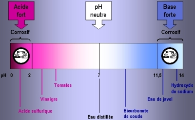pH comparés