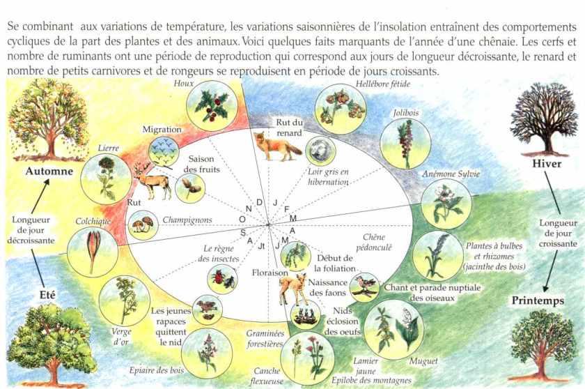 Les facteurs cologiques abiotiques la maison d 39 alzaz ou le blog de l 39 cologie - Maison de l ecologie ...