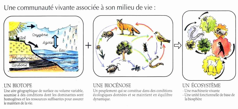 Organique la maison d 39 alzaz ou le blog de l 39 cologie - Maison de l ecologie ...