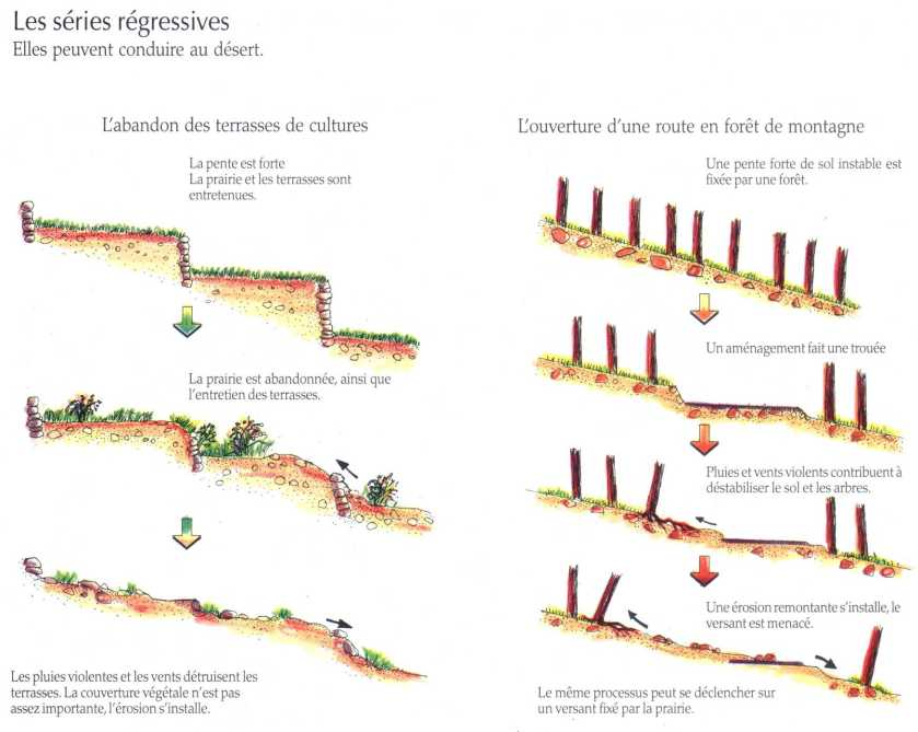 Evolution des cosyst mes la maison d 39 alzaz ou le blog de l 39 cologie - Maison de l ecologie ...