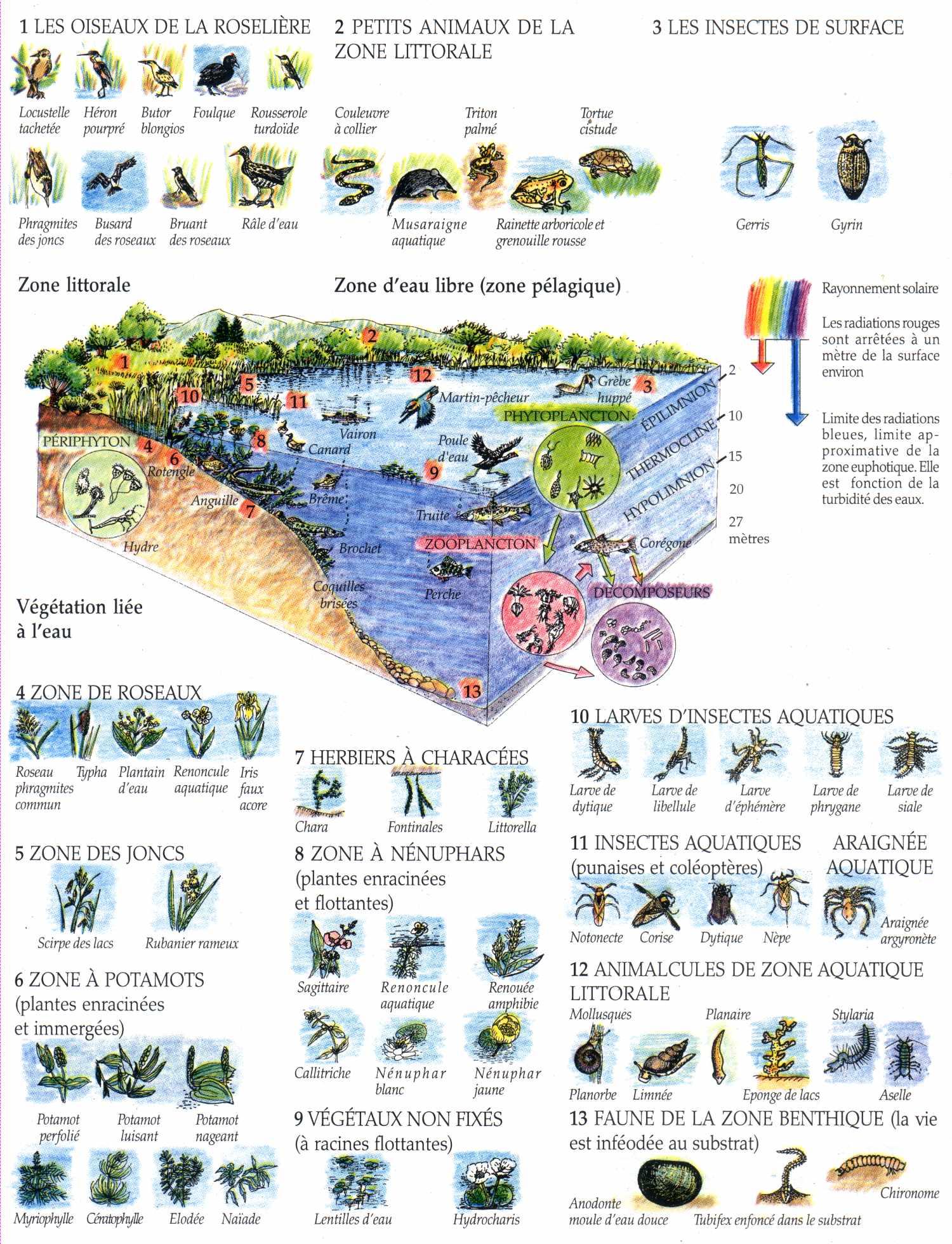 Ecosyst me la maison d 39 alzaz ou le blog de l 39 cologie - Maison de l ecologie ...